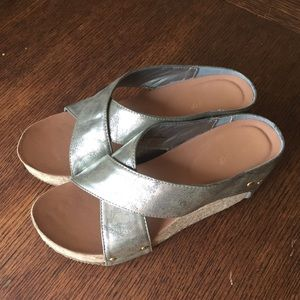 Silver Bamboo Wedges